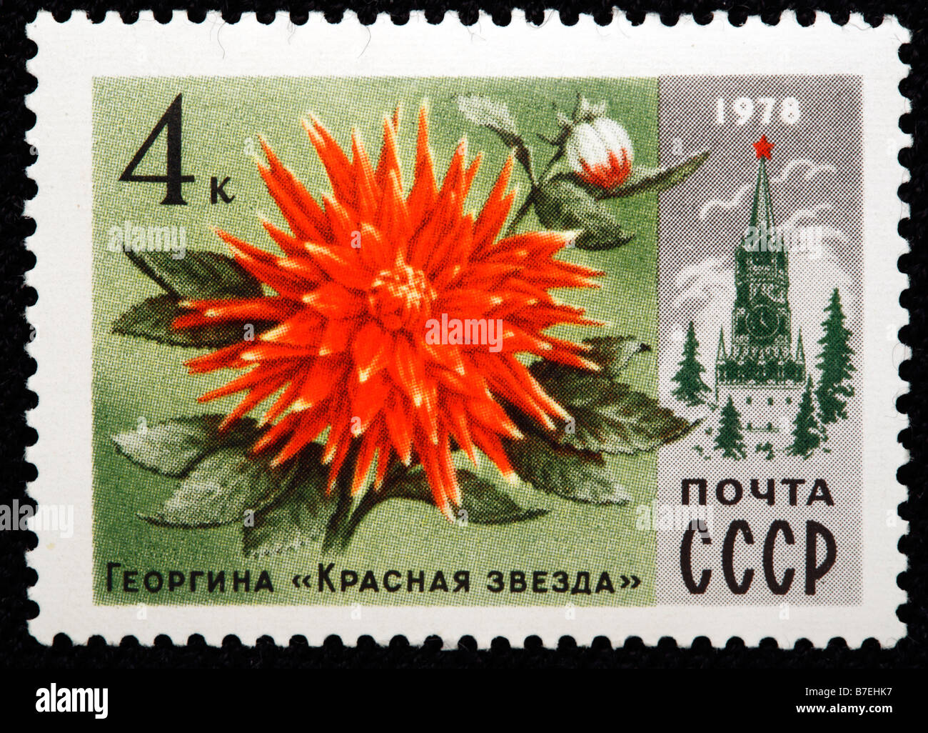 "Dahlia, georgina ""Red star"", postage stamp, USSR, Russia, 1978 Stock Photo"