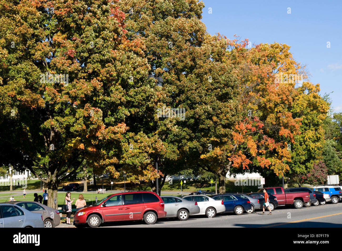 College Green at Dartmouth College Hanover NH New Hampshire New England United States of Stock Photo