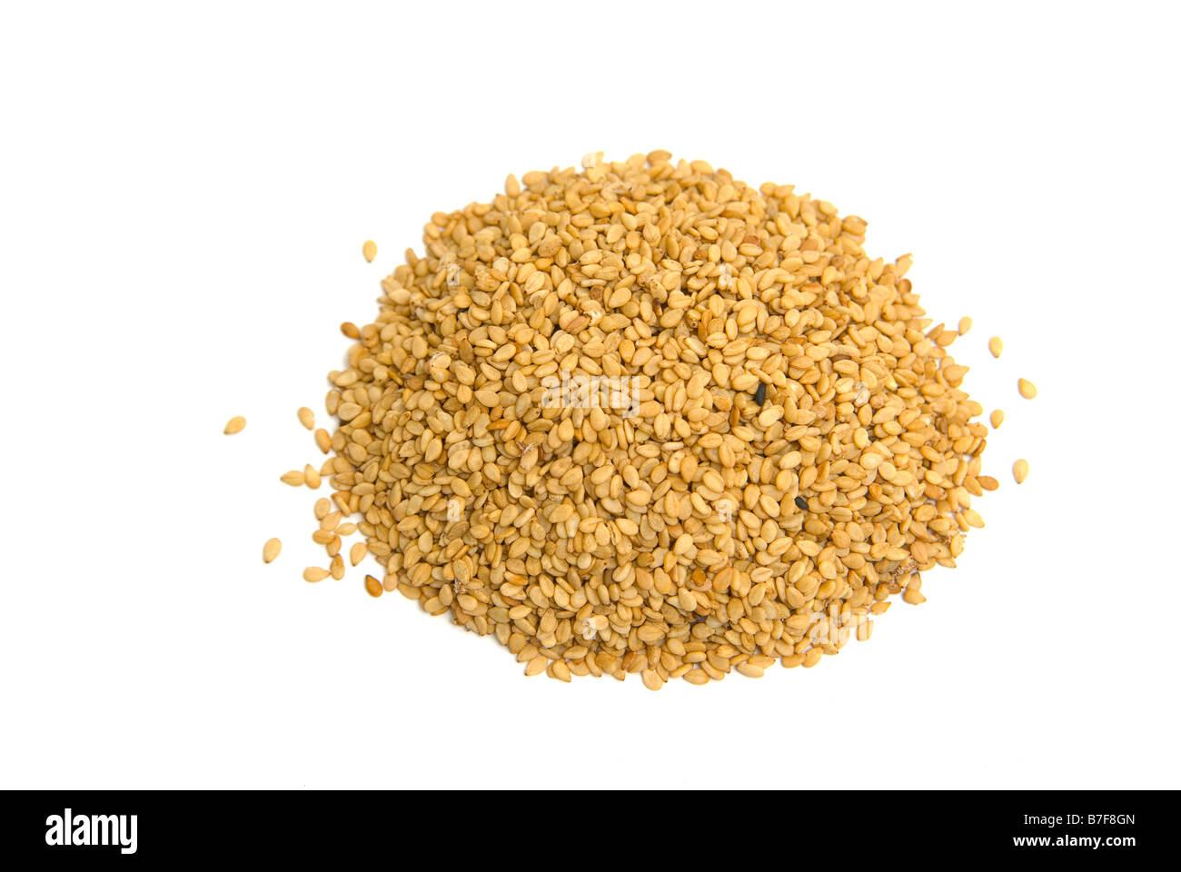 Pedaliaceae Sesame Sesamum indicum - Stock Image