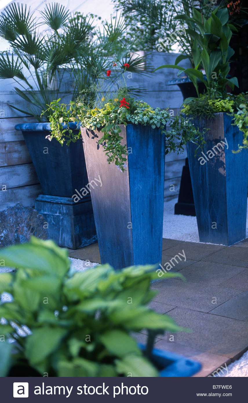 Tall Grey Zinc Planters With Planting Including Pelargonium Canna Plumbago  Hosta Palm Courtyard Patio Of Stone Paving Gravel