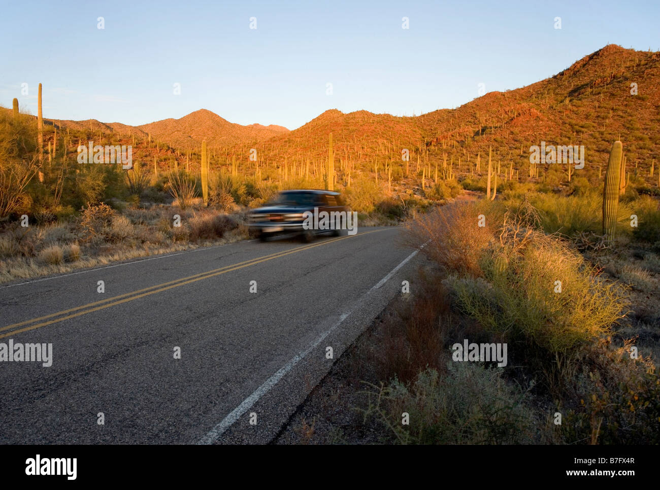 A car drives through Saguaro West National Park on Kinney Road near teh Red Hills area and near Gould Mine Trail - Stock Image