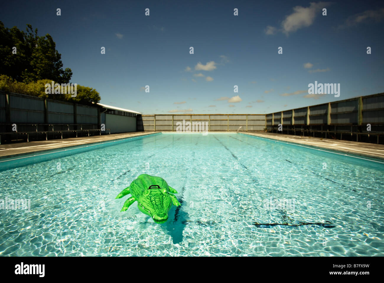 Inflatable Crocodile At Swimming Pool Stock Photo