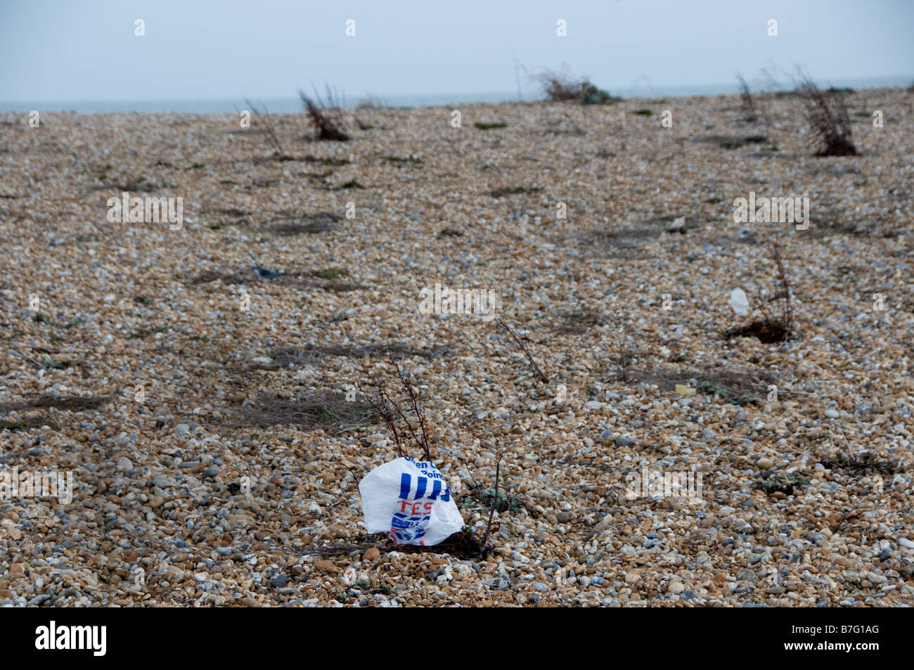 Dungeness Kent Plastic Tesco bag on the beach - Stock Image