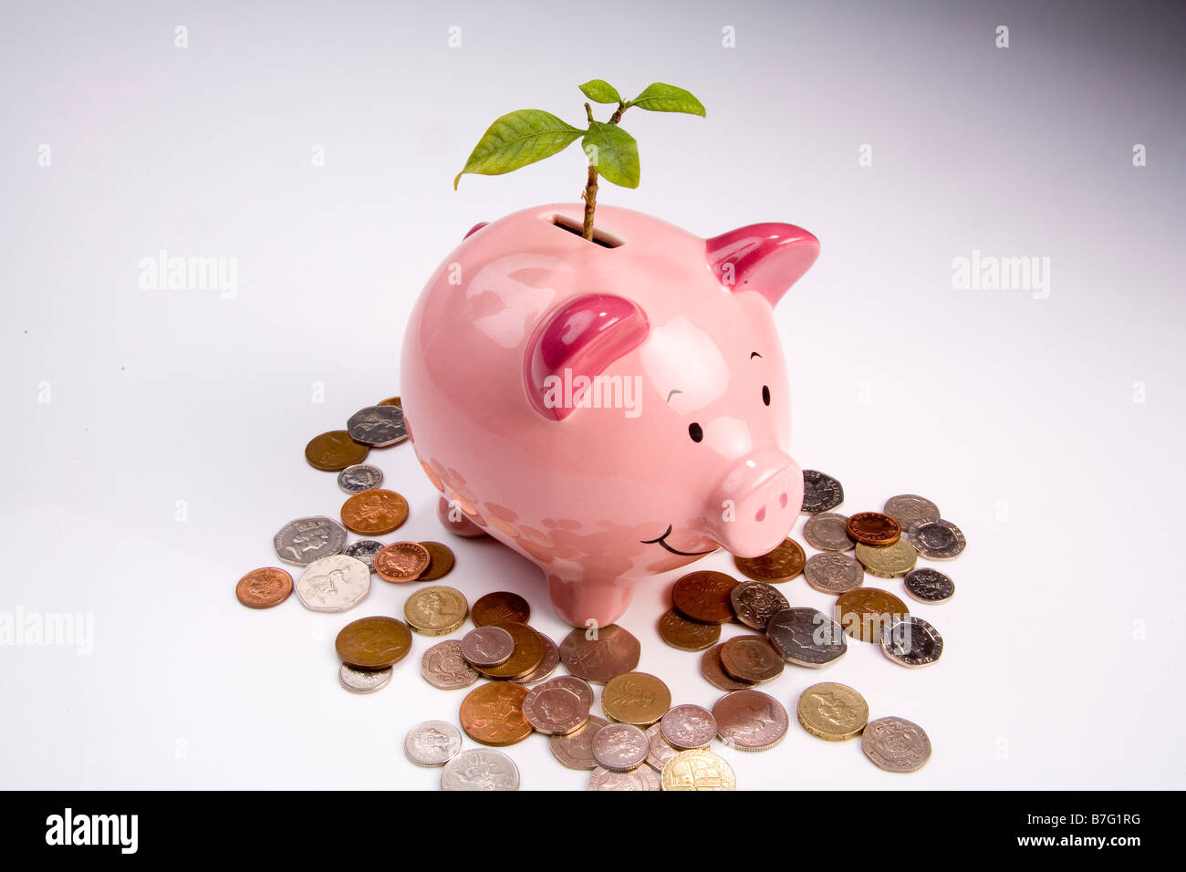Green shoots of financial Recovery - Stock Image