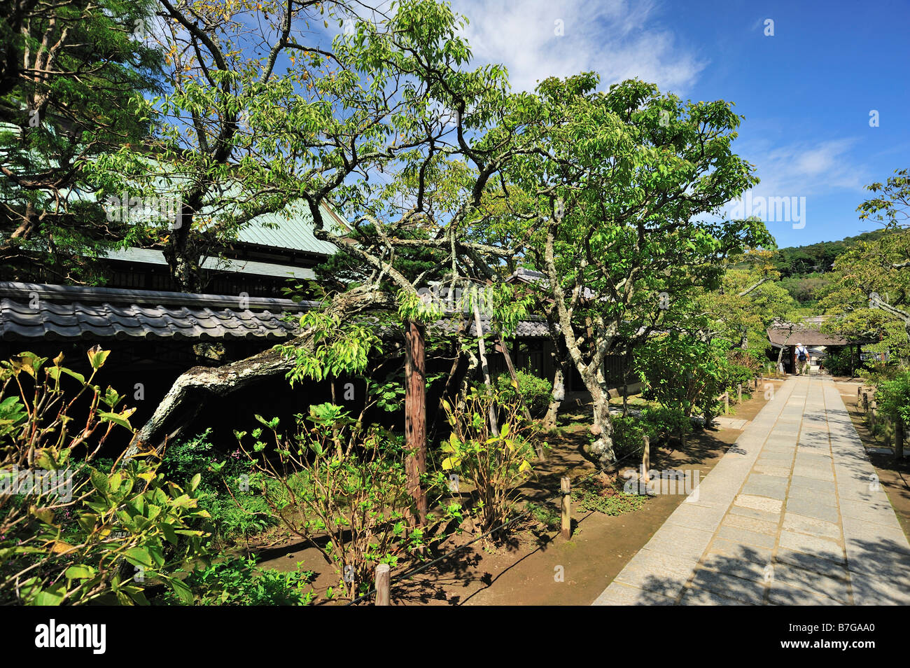 Tokei-ji, Kamakura, Kanagawa Prefecture, Japan - Stock Image