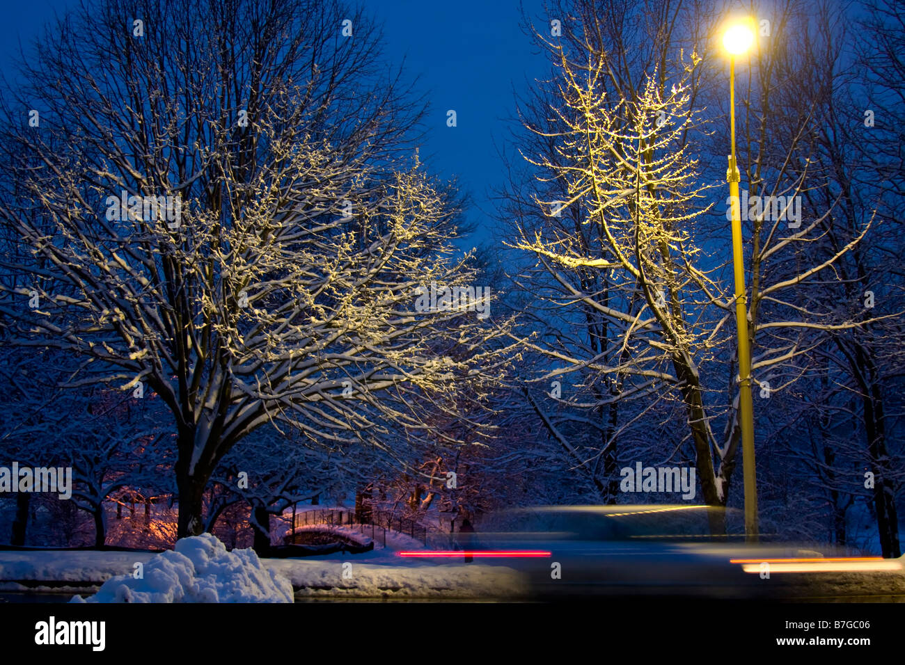 Night scene in Winter.  Streetlight illuminating snow covered trees with blurred car passing on street. - Stock Image