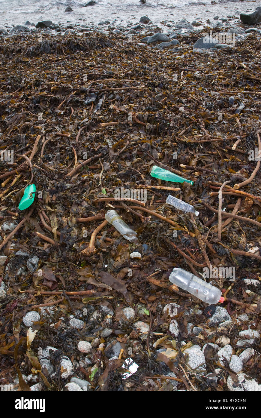 Various plastic bottles and containers washed up on a seaweed covered beach. - Stock Image