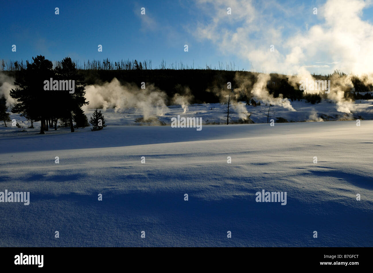 Steam vents in winter. The Yellowstone National Park, Wyoming, USA. - Stock Image