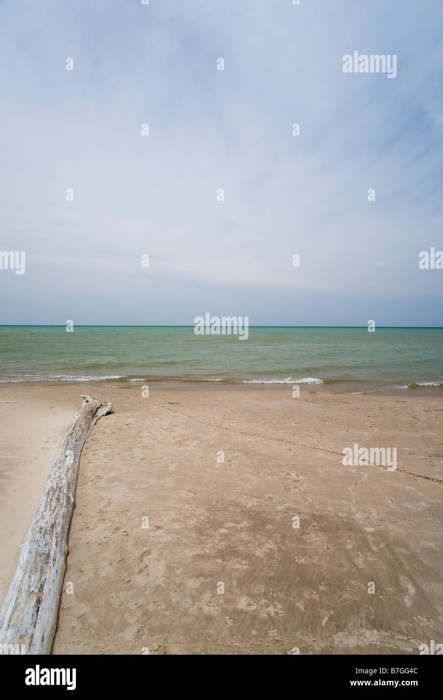 Beach Driftwood Water and Sky: The flat beach at the park dominated by a large sky over lake Huron Stock Photo