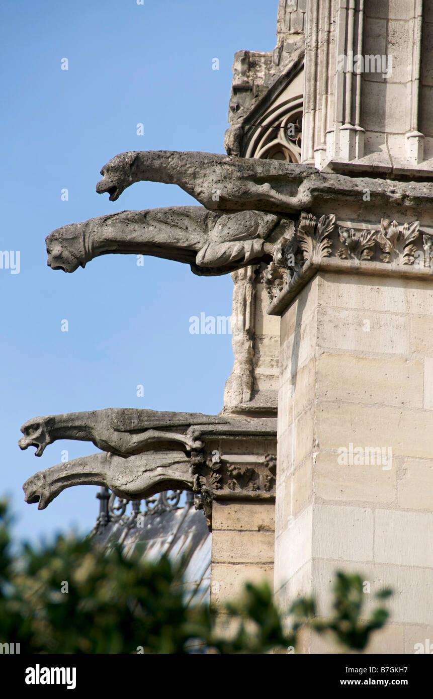Gargoyles of Notre Dame de Paris - Stock Image