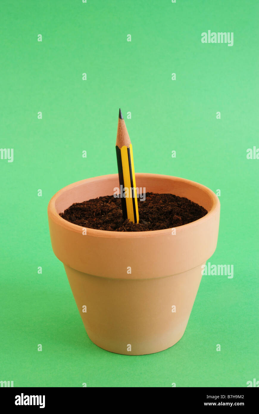 Pencil sprouting in flower pot. - Stock Image