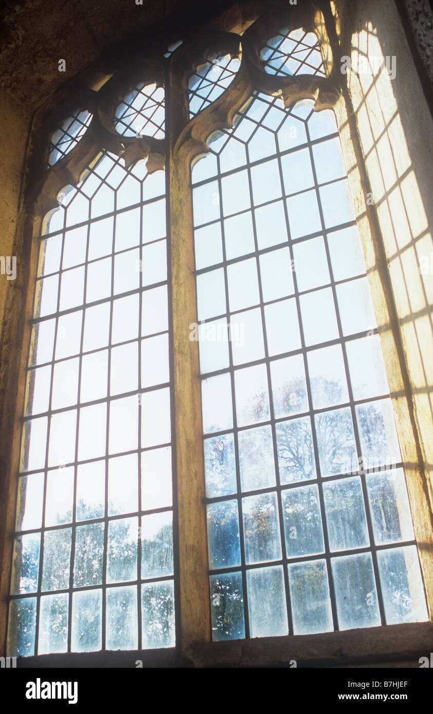 Plain Square And Diamond Leaded Windows In Early English Gothic Style With Evening Shadows On Recess Distant Beech Tree