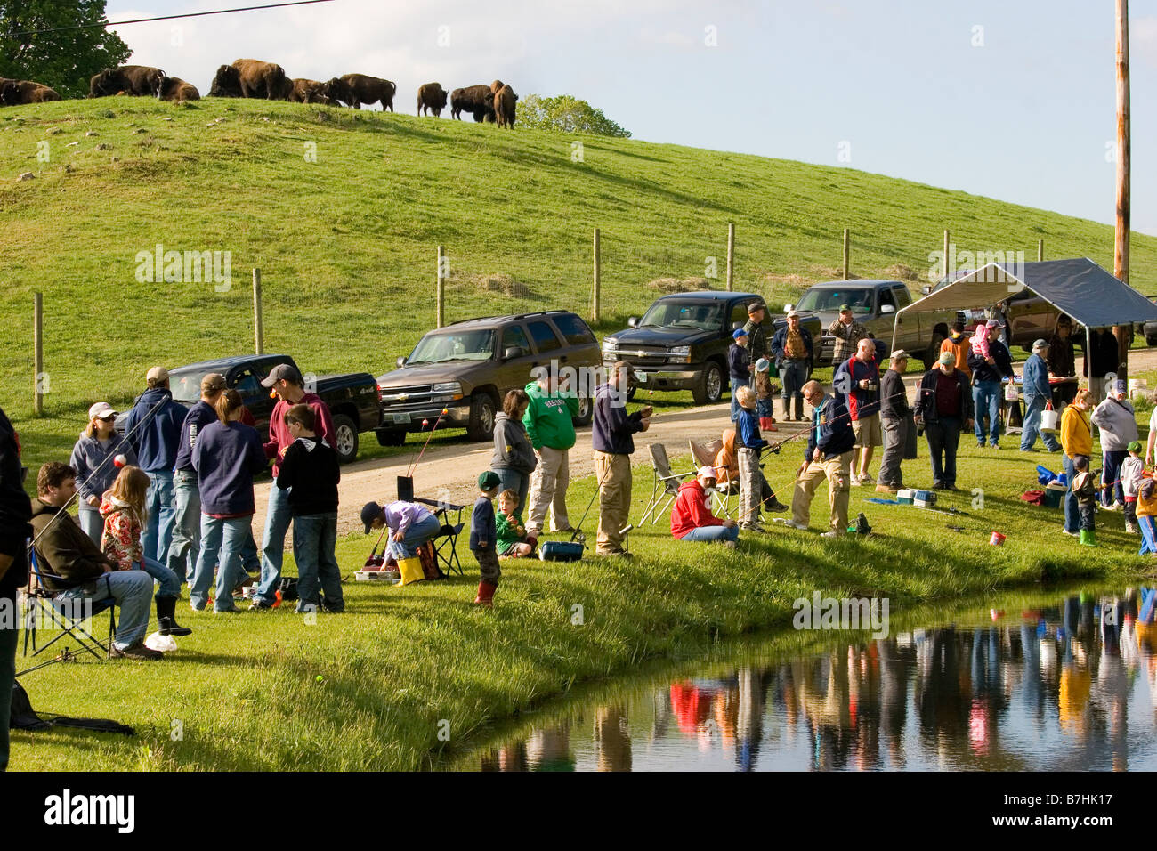 Families gathered around pond for summer morning fishing derby, buffalo in background - Stock Image