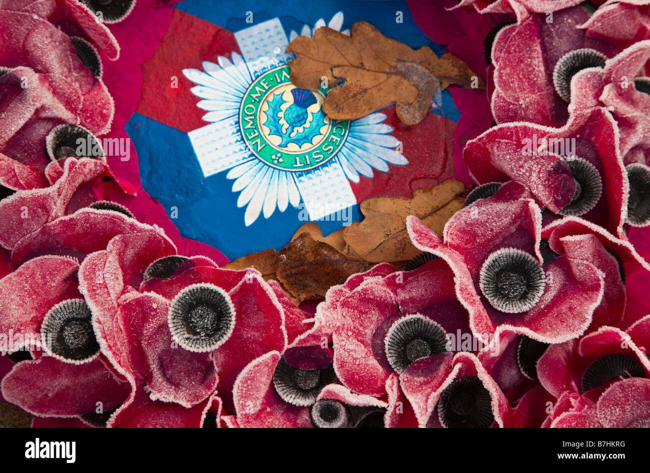 Armistice Day Haig Fund poppy memorial November 11th Britain wreath laid on a war memorial with winter frost - Stock Image