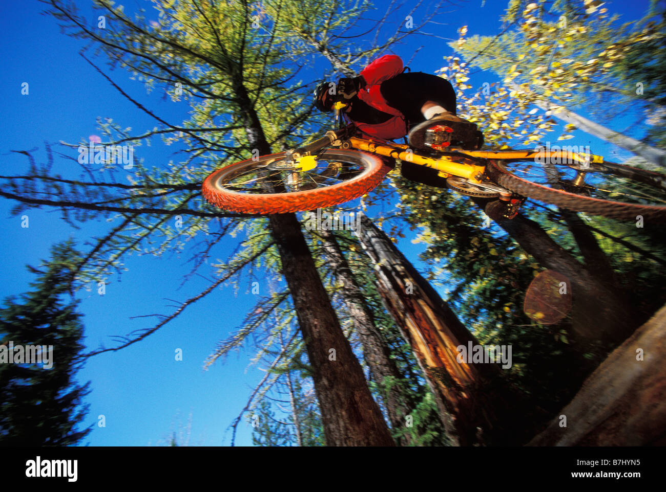 young man catches air on mountain bike near Fernie, BC, Canada - Stock Image