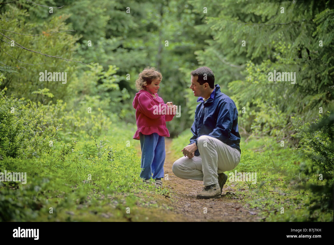 Dad leans down to talk with daughter, in forest with lupin flowers, Whistler, BC - Stock Image