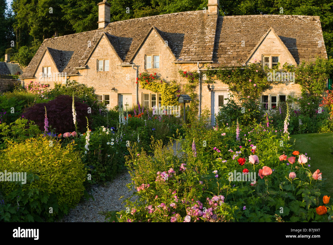 The last of the evening sunlight falling on cottage gardens in the Cotswold village of Bibury, Gloucestershire - Stock Image