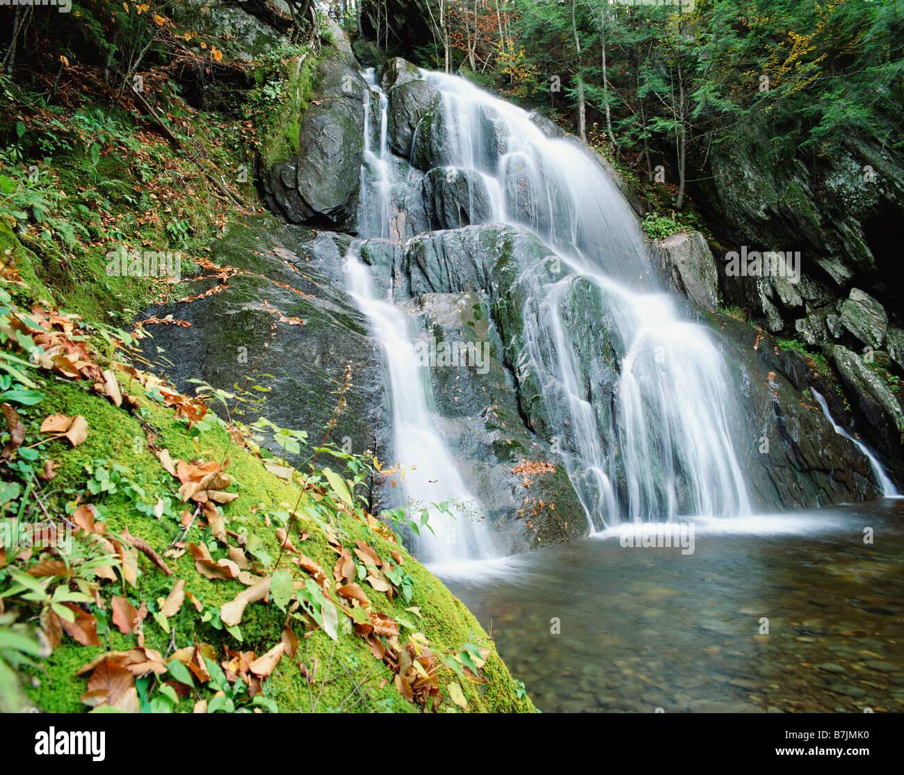 USA VERMONT GREEN MOUNTAIN NATIONAL FOREST MOSS GLEN FALLS - Stock Image