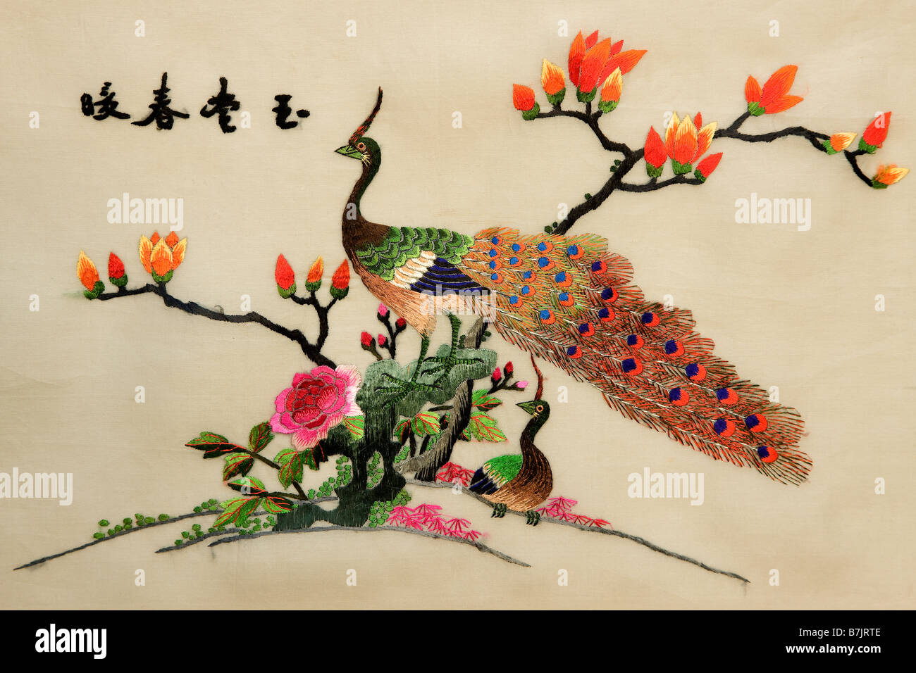 Colourful chinese silk embroidery of peacocks and bush in flower with text 'The hall is full of fortune in warm - Stock Image