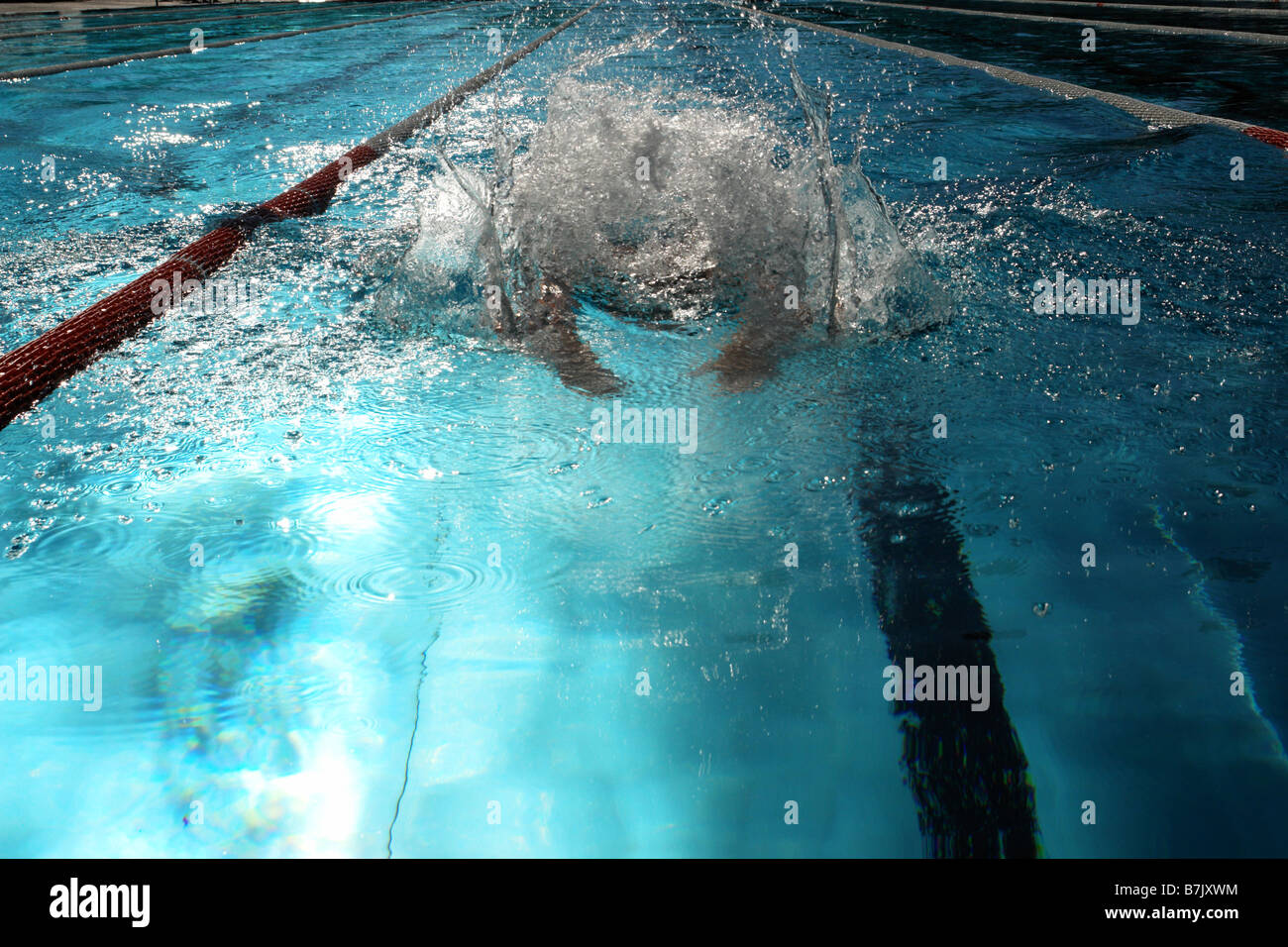 Swimmer in a swimming pool - Stock Image