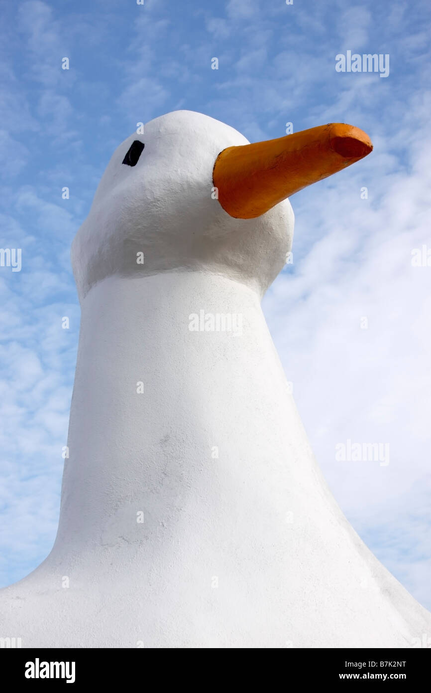 The Big Duck, monument to Long Island, New York, duck farming industry - Stock Image