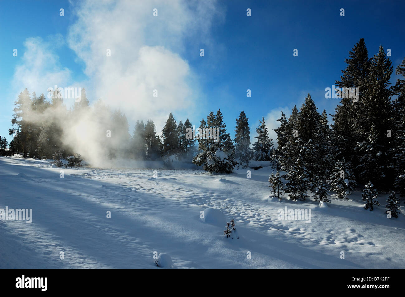 Steam vent. The Yellowstone National Park, Wyoming, USA. Stock Photo