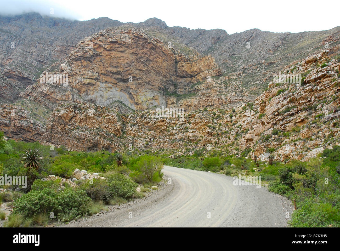 Cape Fold mountains in background, Seweweeks poort, near Oudtshoorn in the Klein Karoo, South Africa - Stock Image