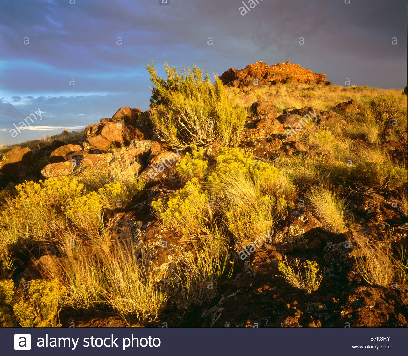 Ruins of the Sinagua culture Citadel hilltop Pueblo Wupatki National Monument Arizona Stock Photo