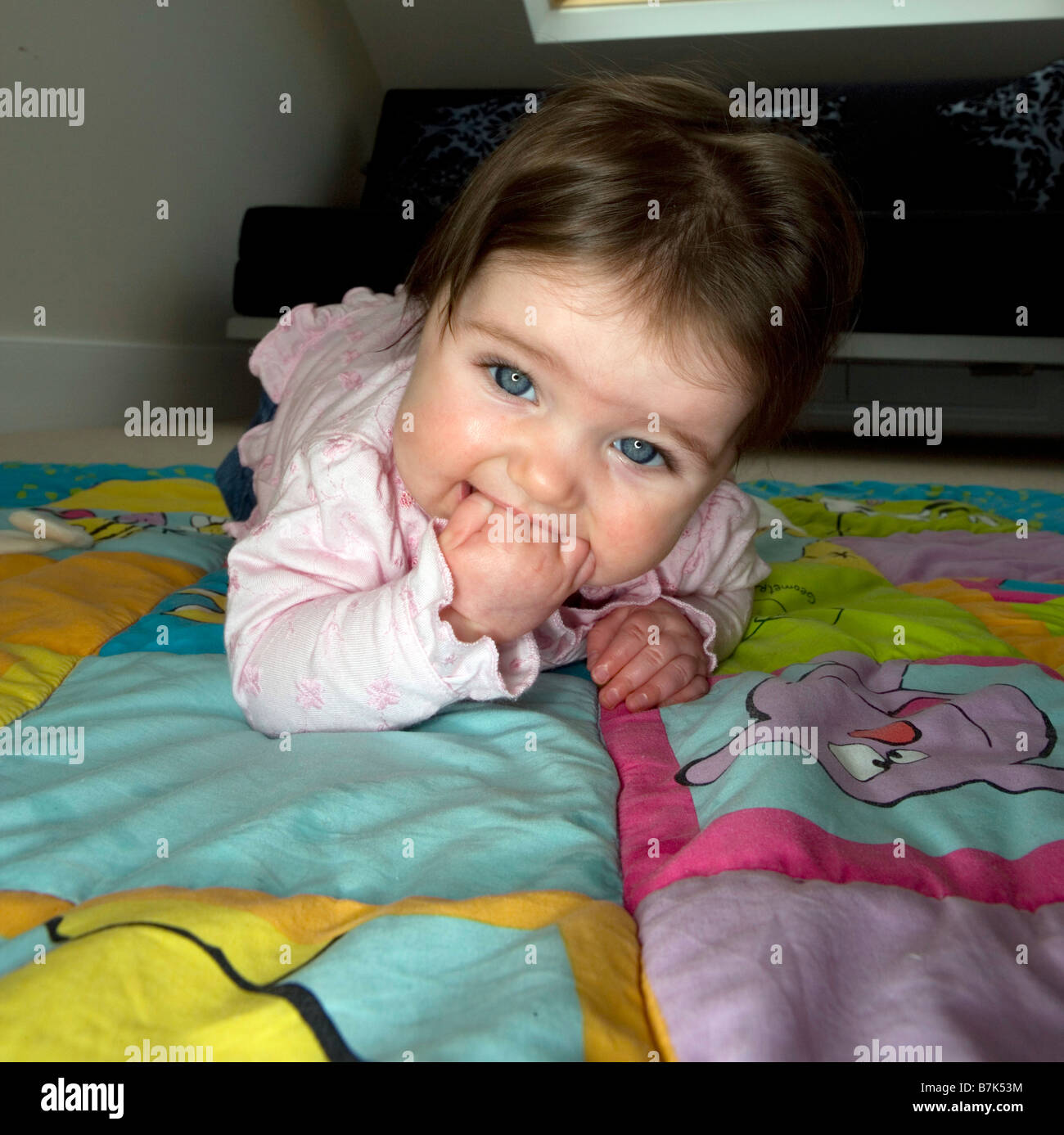 A six month old baby girl chews on her hand whilst trying to crawl . - Stock Image