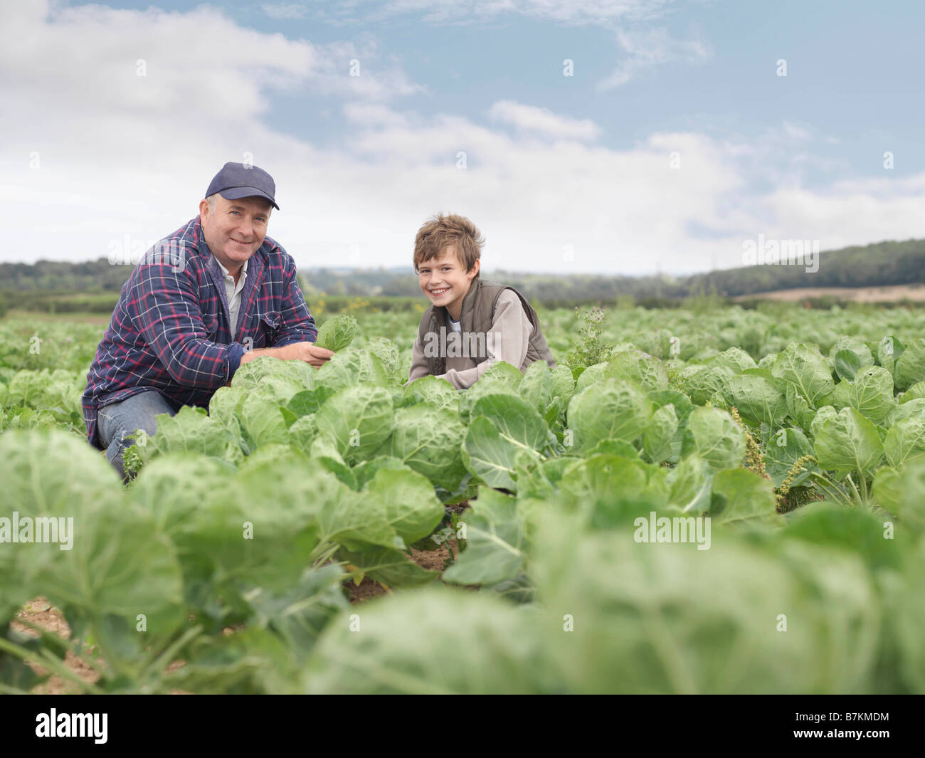 Farmer And Son In Crop Field - Stock Image