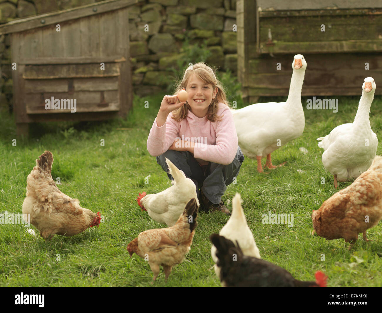 Girl Holding Egg With Hens And Geese Stock Photo