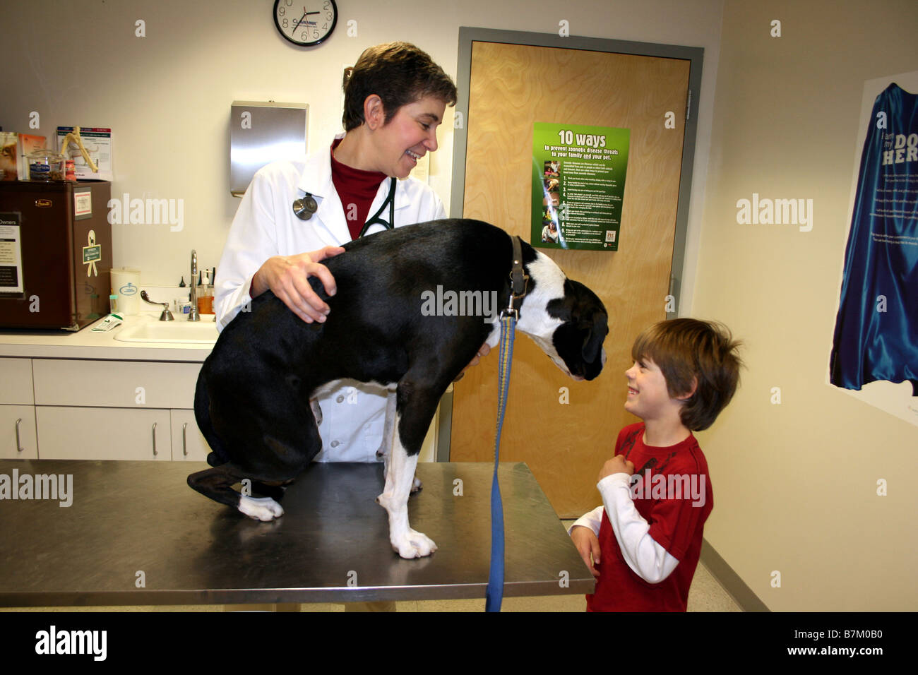 young boy talks to veterinarian about dog and smiles, vet, - Stock Image