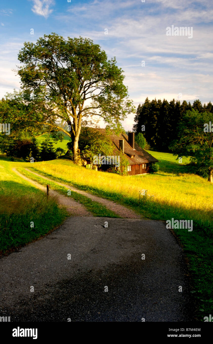 Typical German Black Forest house Black Forest Germany - Stock Image