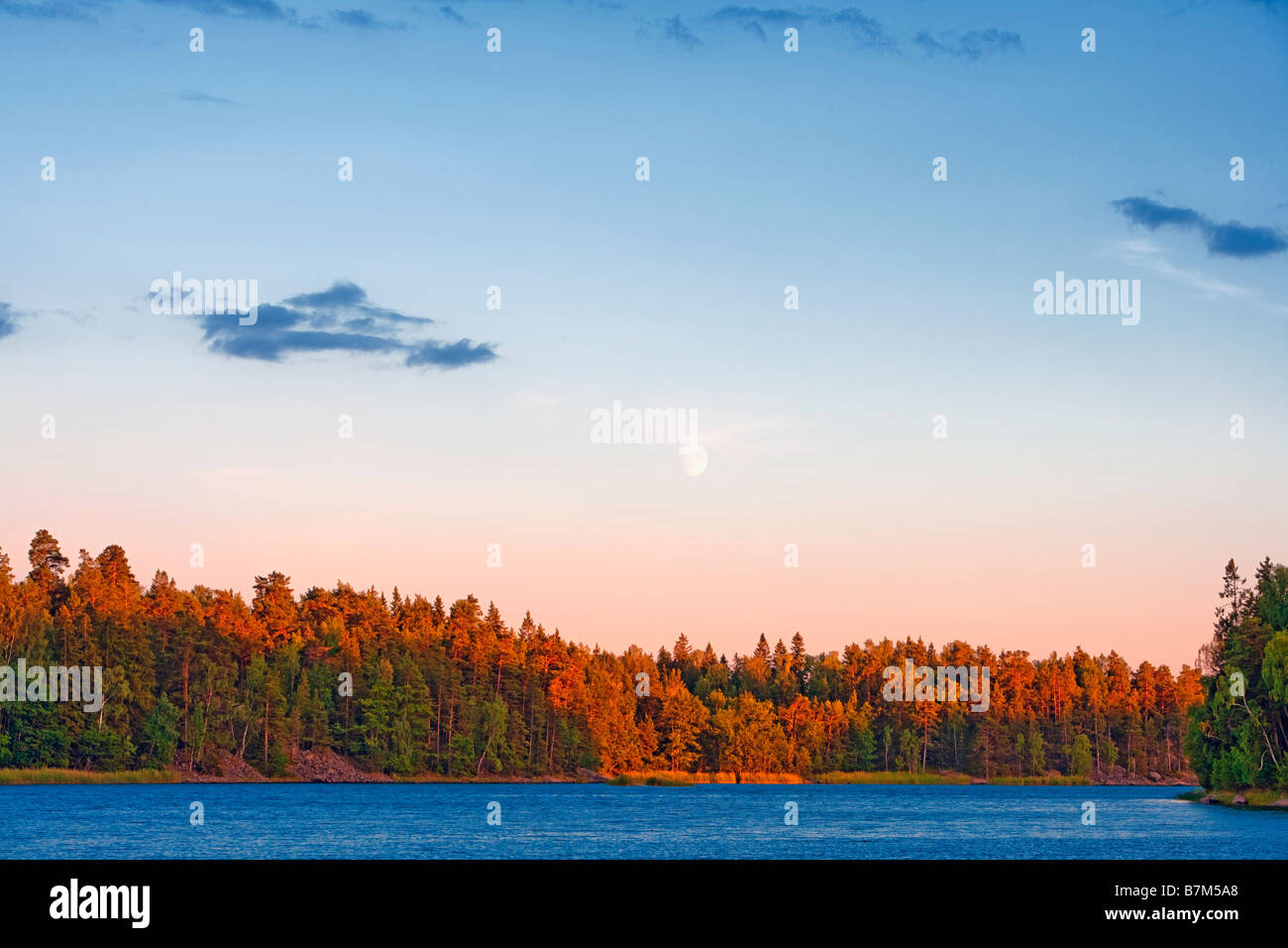 SWEDEN STOCKHOLM ARCHIPELAGO LANDSCAPE WITH FOREST AND WATER - Stock Image