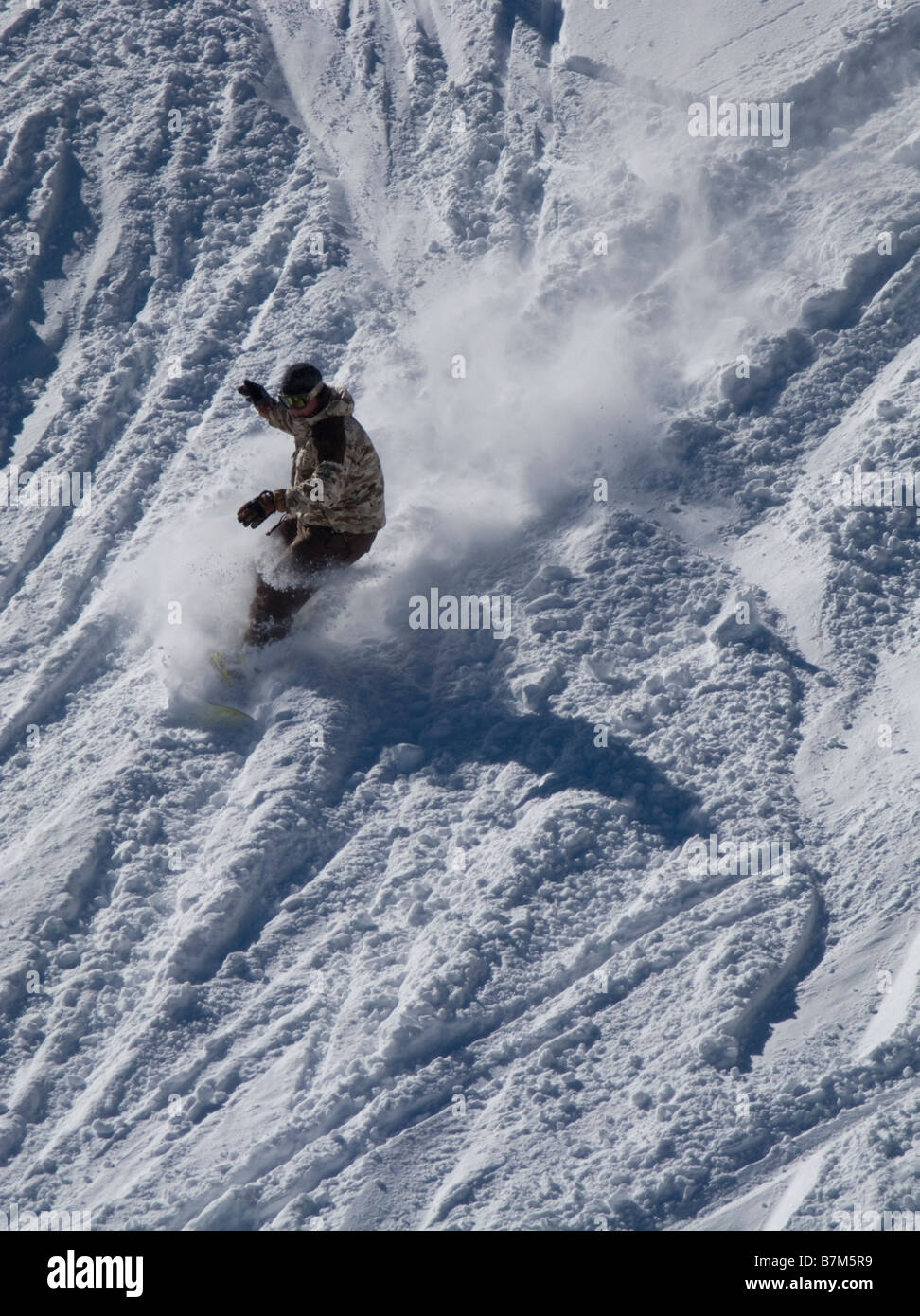 Snowboarder descending in fresh snow and sunshine at Alpine Meadows ski area above North Lake Tahoe, CA. - Stock Image