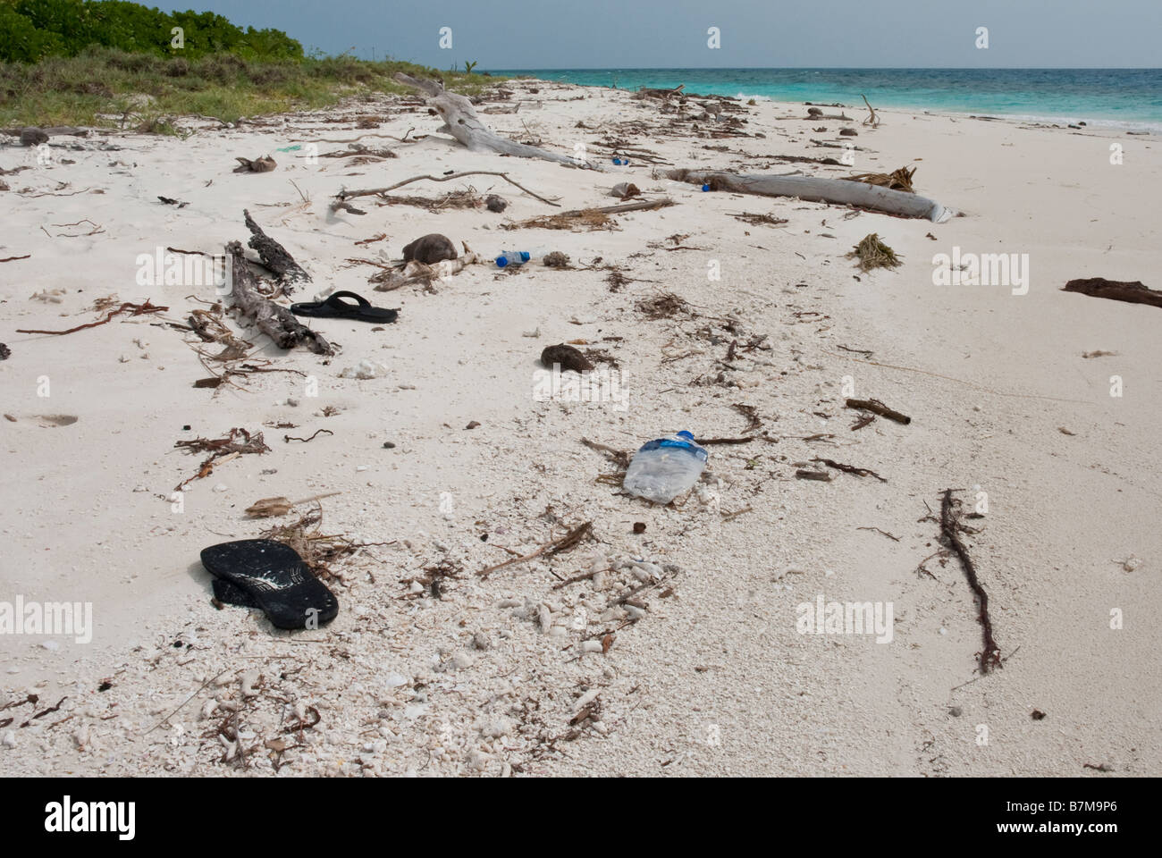 Plastic litter and driftwood washed up on a tropical beach in the Maldives. - Stock Image