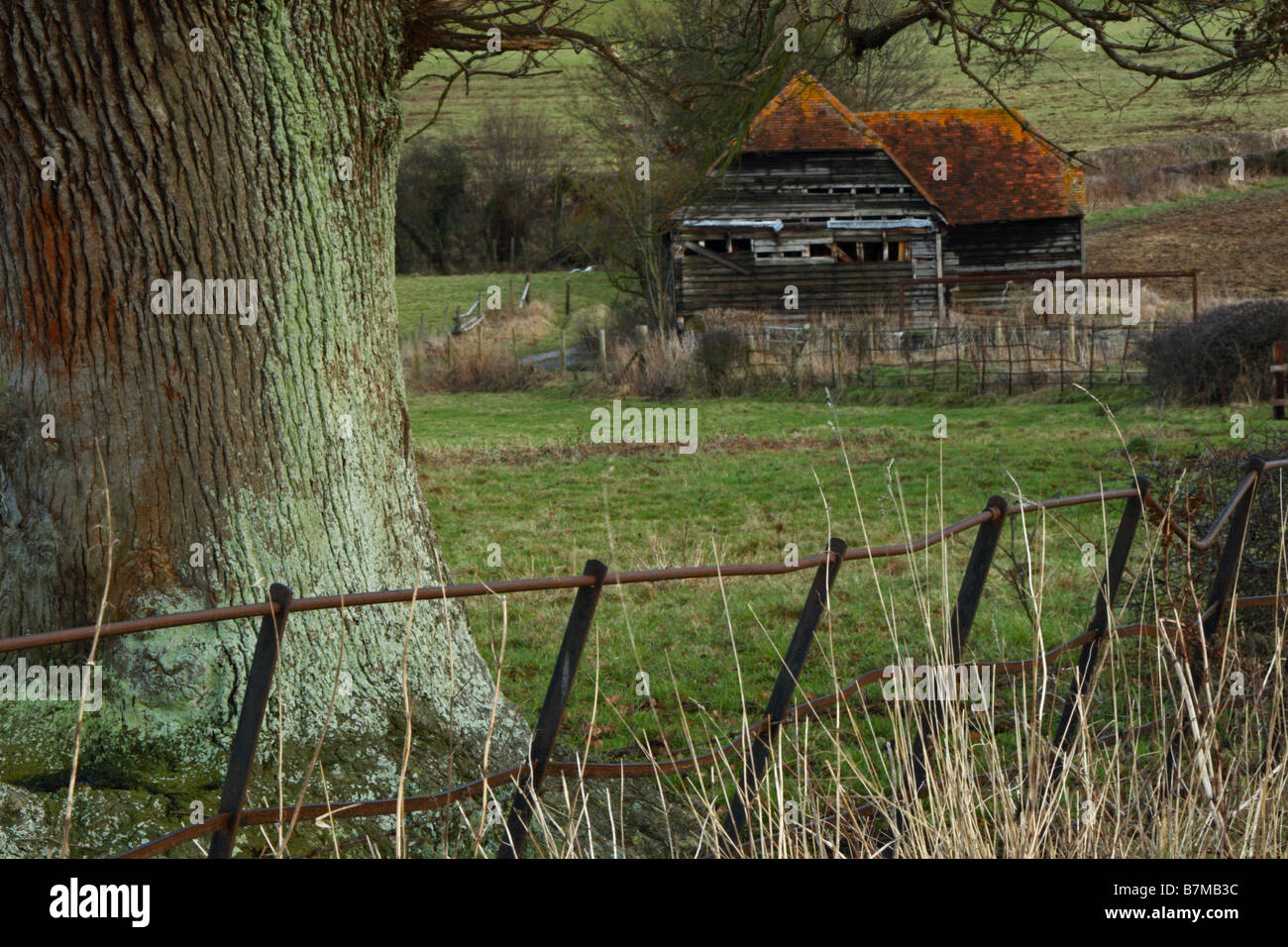 A derelict barn near Hambleden, Buckinghamshire, United Kingdom - Stock Image