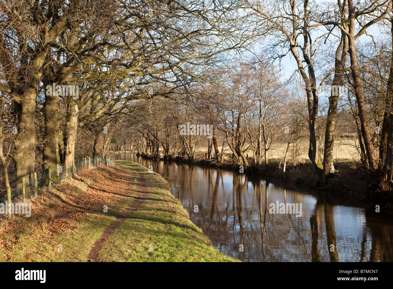 Towpath on Brecon and Monmouthshire canal in winter Llangynidr Wales UK Stock Photo