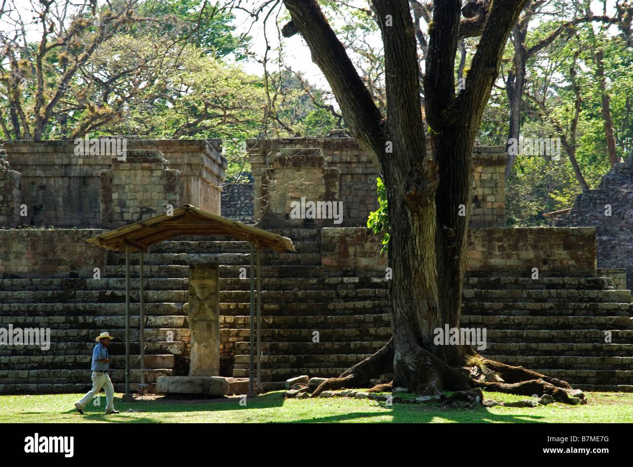 Honduras, Copan, Maya Ruins of Copan, a UNESCO World Heritage Site. - Stock Image