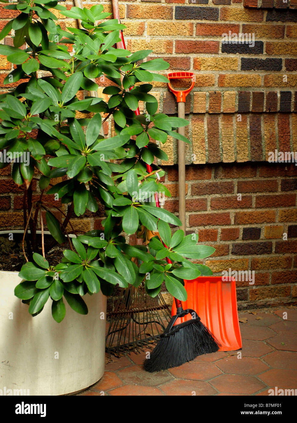 Outdoor tools and gardening implements against a brick wall next to a potted bush or plant. - Stock Image