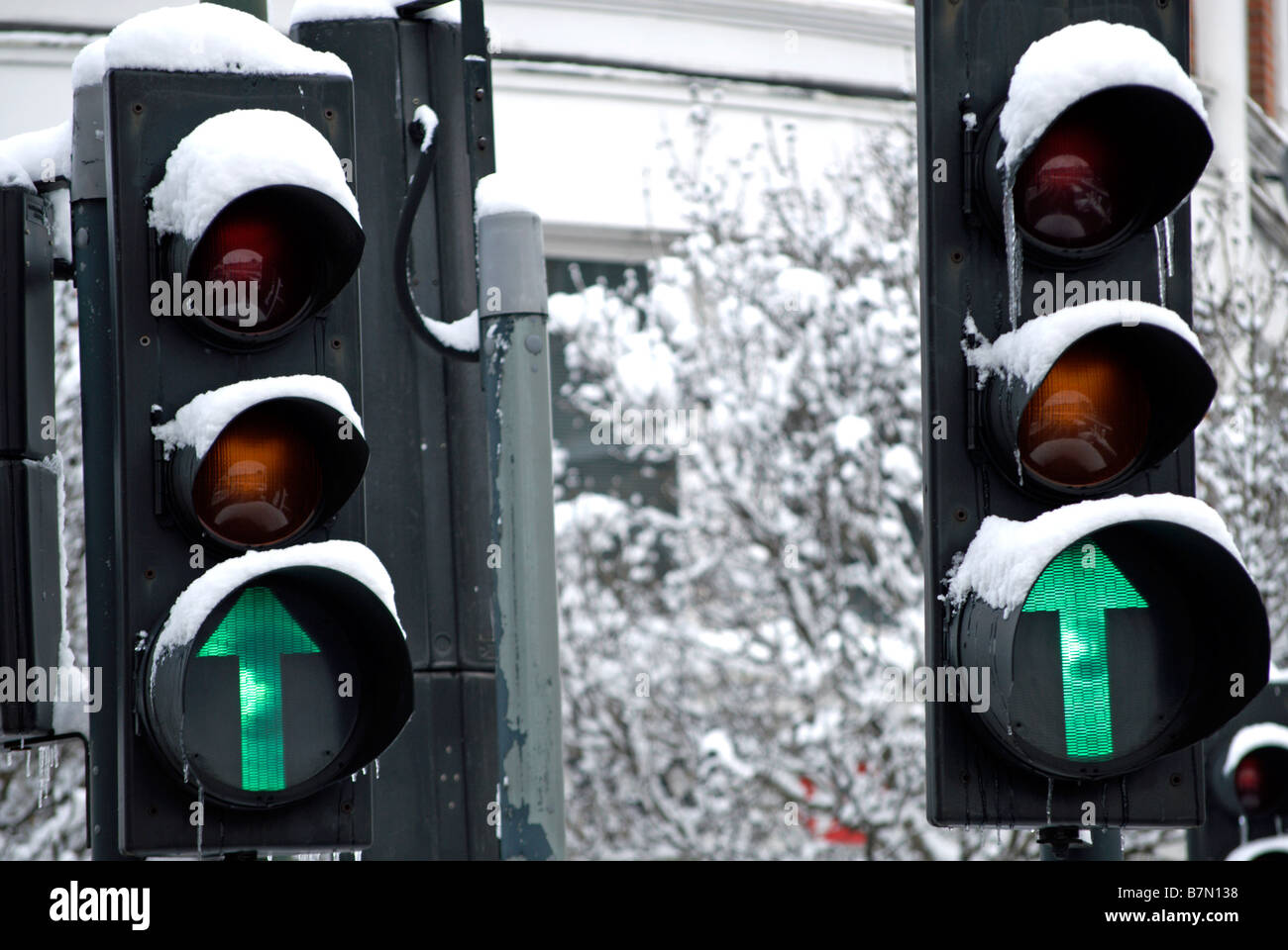 pair of snow covered british traffic lights both showing green arrrows fowlloing heavy snowfall on 2 february 2009 - Stock Image
