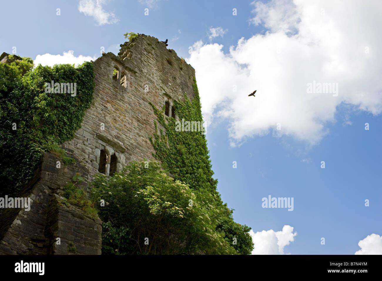 Hay Castle, Hay on Wye, Wales UK - Stock Image
