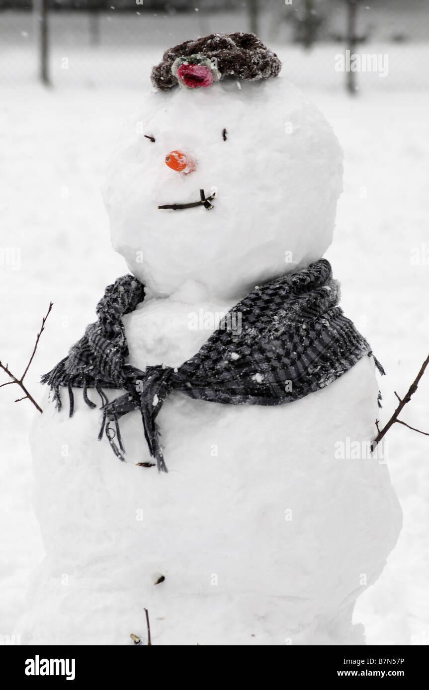 Snowman by Tony Rusecki - Stock Image