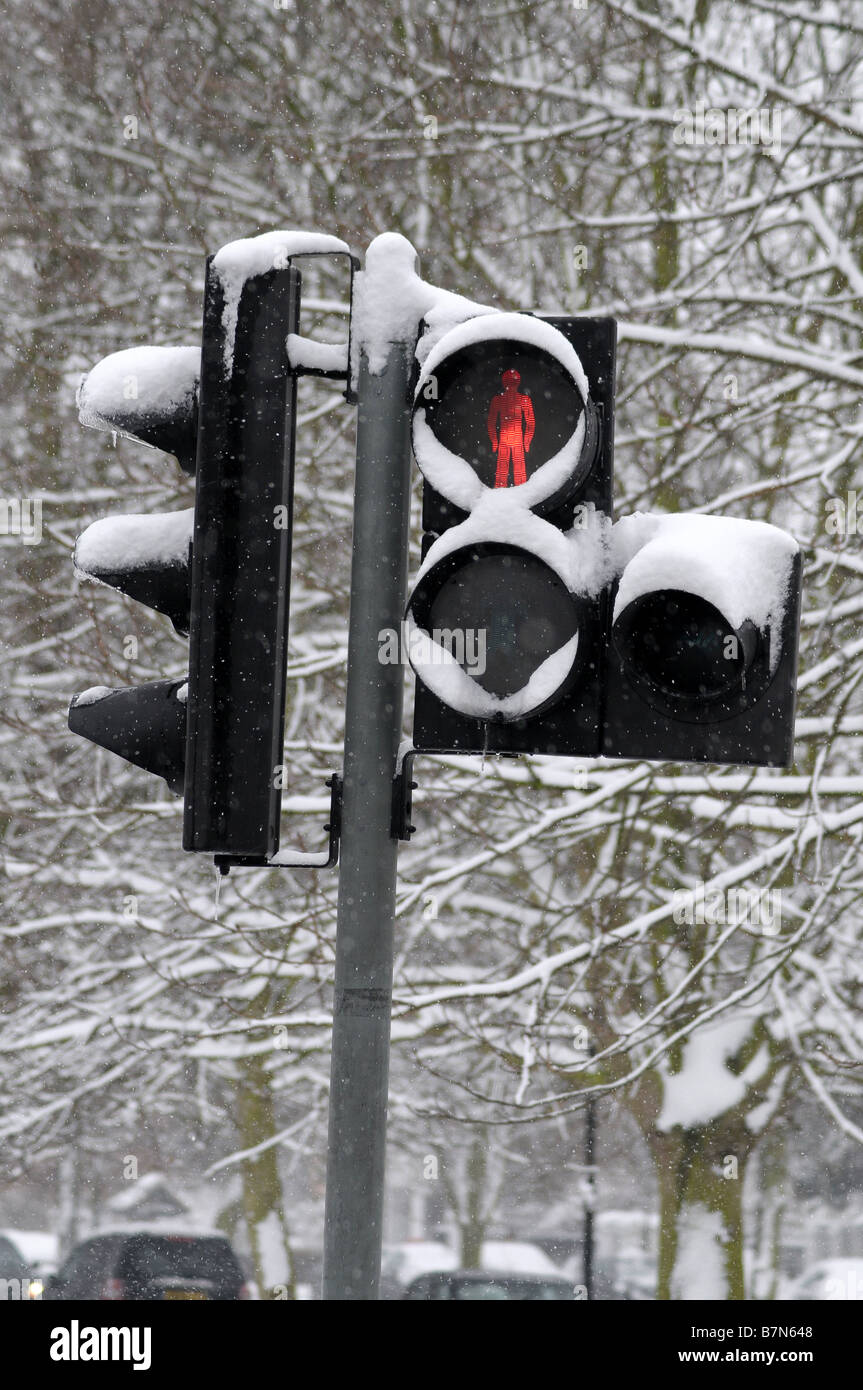 Traffic lights in the snow showing stop sign - Stock Image