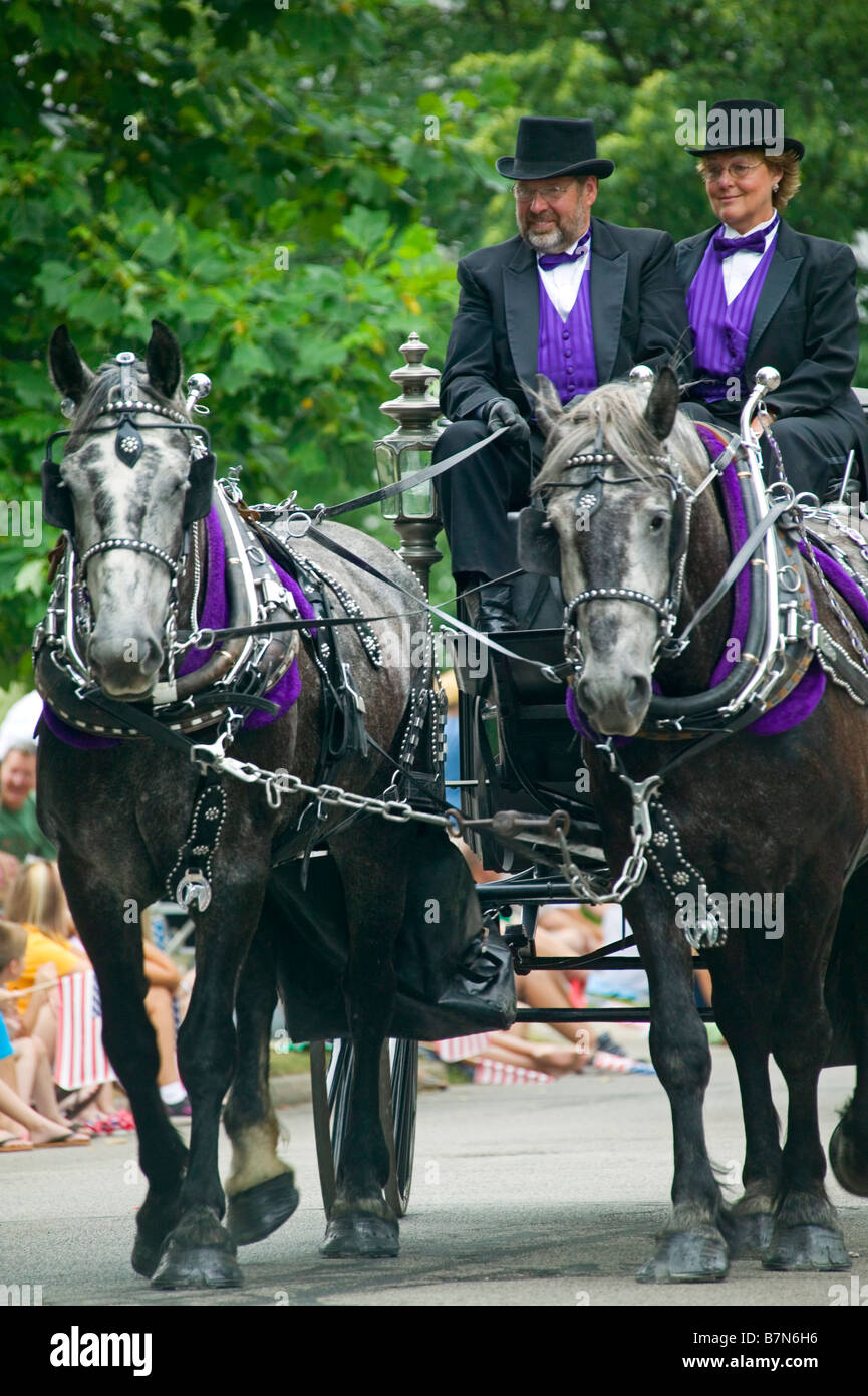 Draft horse in ornamental harness pull an antique wagon with two people in formal attire. - Stock Image