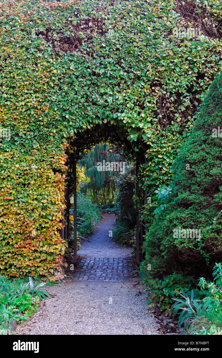 path leading toward through arched archway opening entrance beech hedge neatly clipped garden feature - Stock Image