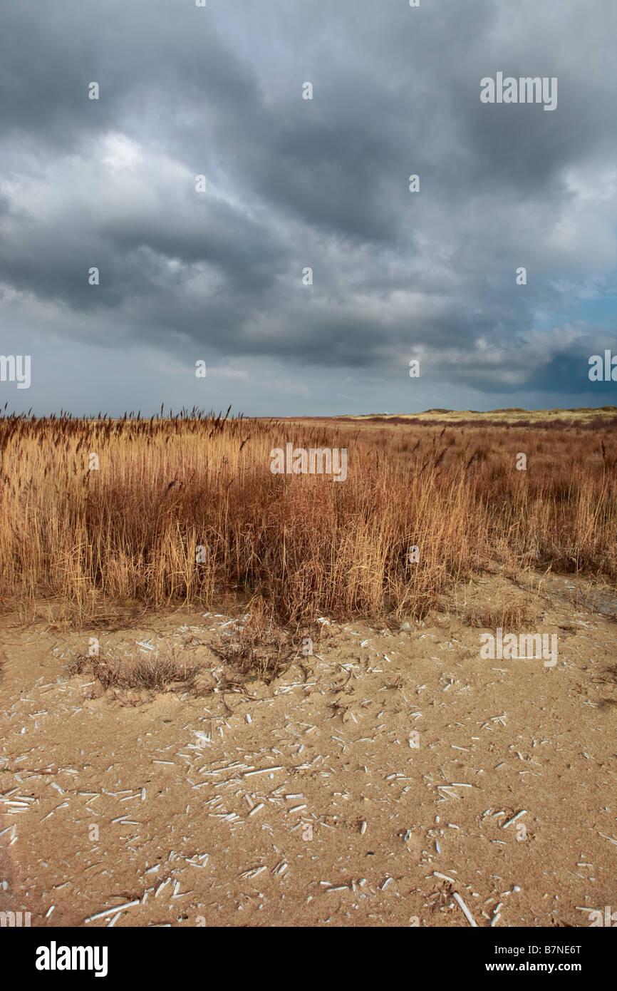 Birkdale Green Beach on the Sefton Coast, UK - Stock Image