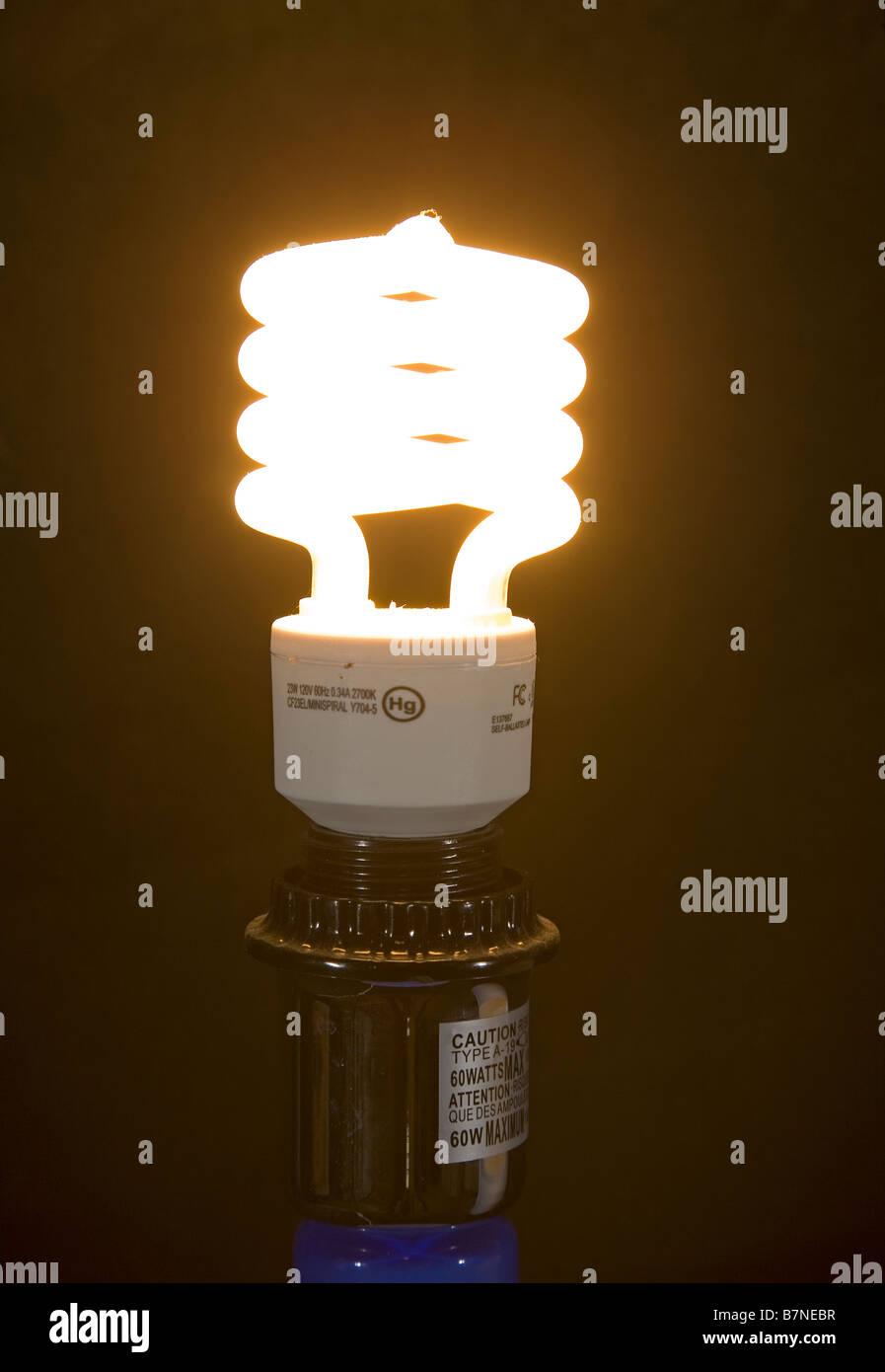 A 23 watt low energy green minispiral self ballasted light bulb or lamp - Stock Image