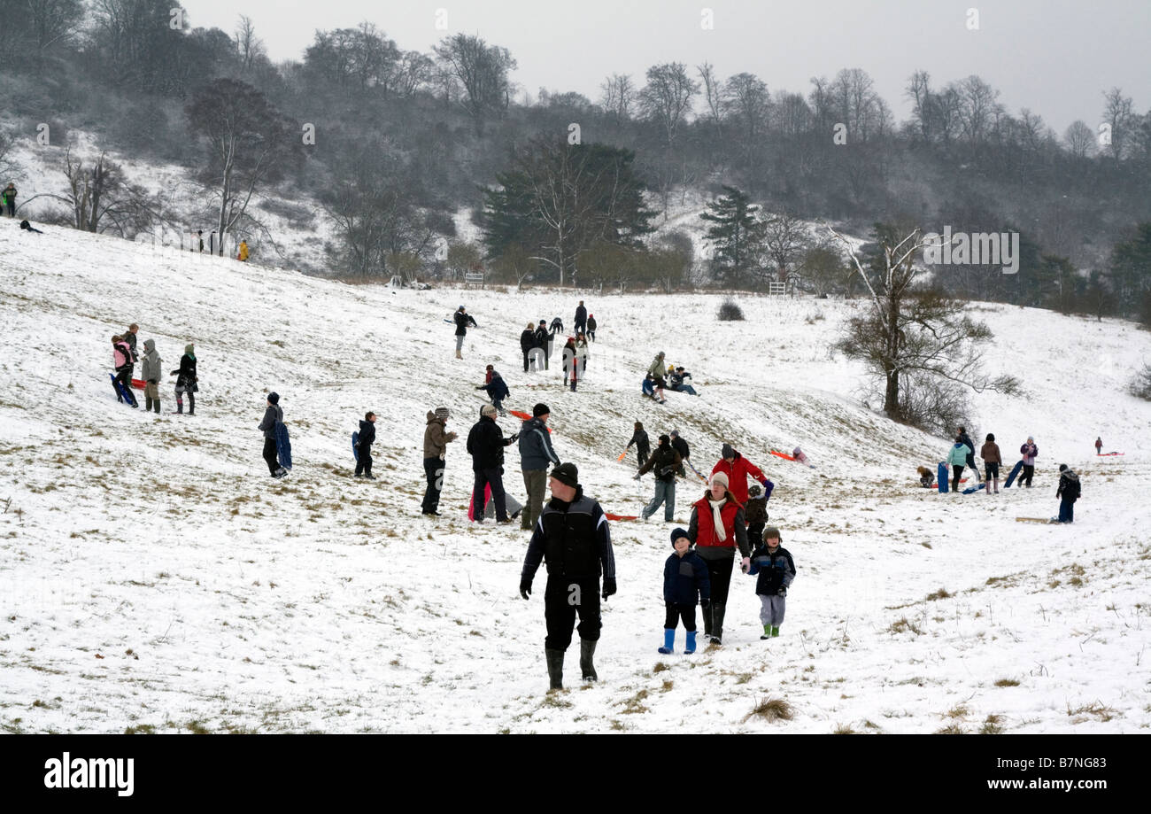 Winter Storm - Tring Park - Hertfordshire - Stock Image