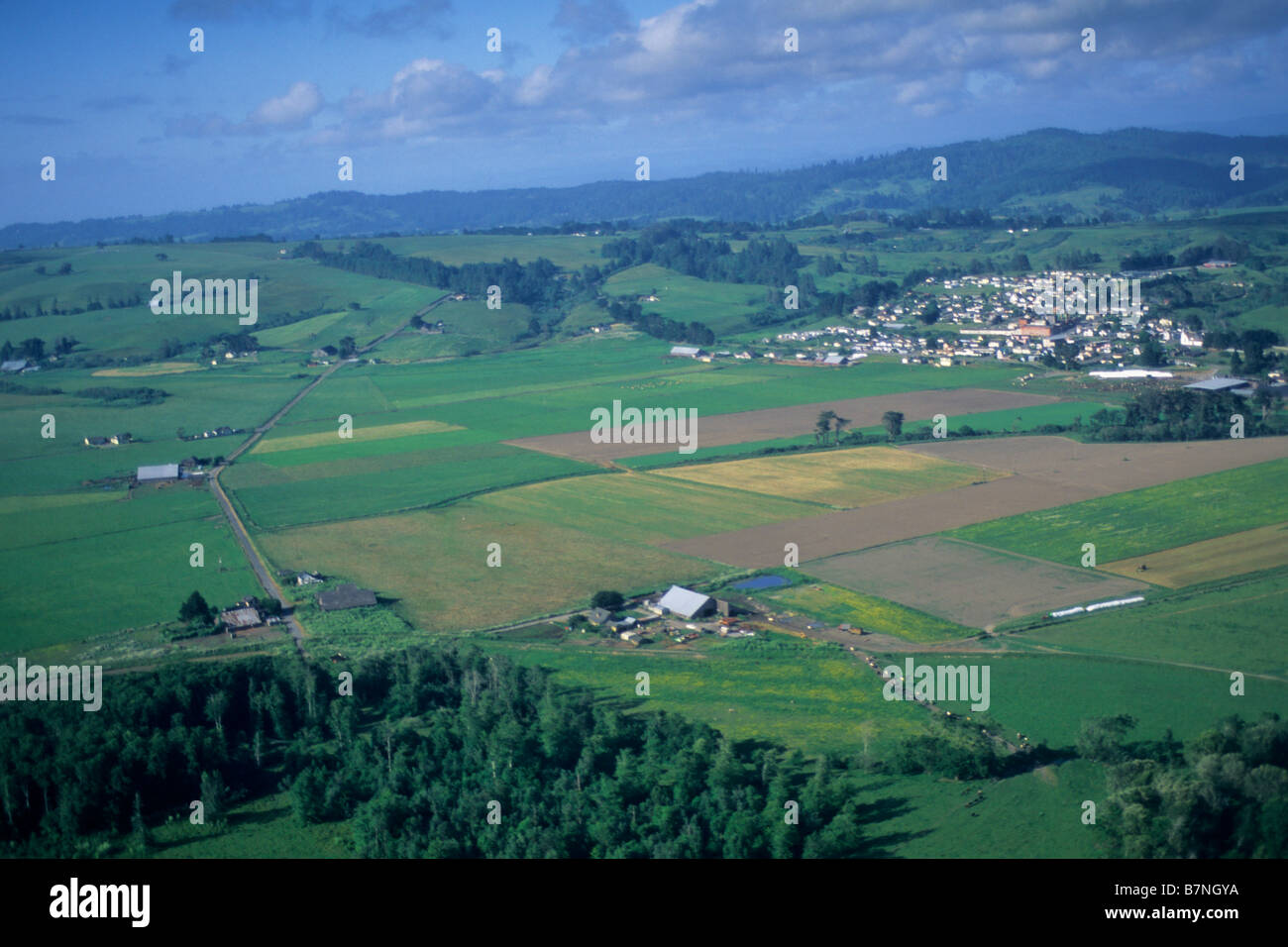 Aerial over the Eel River Valley near Ferndale Humboldt County CALIFORNIA - Stock Image